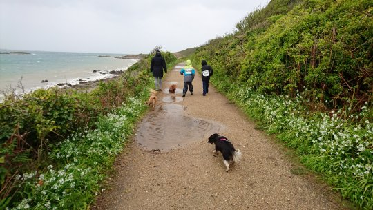 A wet and windy Herm World Aid Walk 2017 (1)